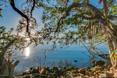 Merritt Island Single Family Home For Sale: 10330 S Tropical Trail S