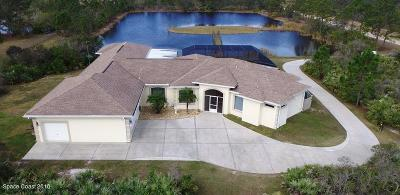 Brevard County Single Family Home For Sale: 195 Terkam Road