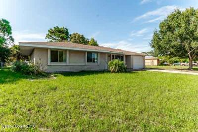 Palm Bay Single Family Home For Sale: 1171 Mascot Street NE