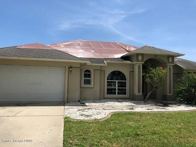 Merritt Island Single Family Home For Sale: 3535 Sunset Ridge Drive