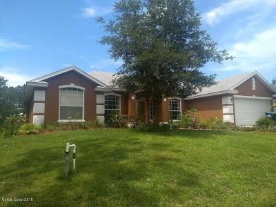 Palm Bay Single Family Home For Sale: 115 Lamar Street SW