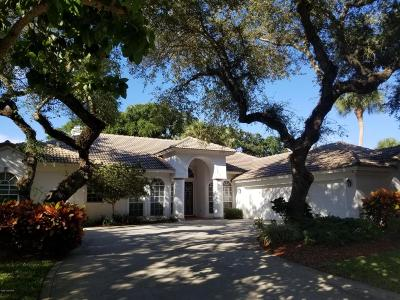 Brevard County Single Family Home For Sale: 335 Hammock Shore Drive