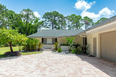 Palm Bay Single Family Home For Sale: 1639 Emmaus Road NW