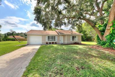 Palm Bay Single Family Home For Sale: 2347 Emerson Drive SE
