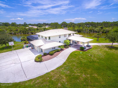 Merritt Island Single Family Home For Sale: 2200 Chase Hammock Road