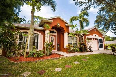 Brevard County Single Family Home For Sale: 195 NE Hurst Road NE