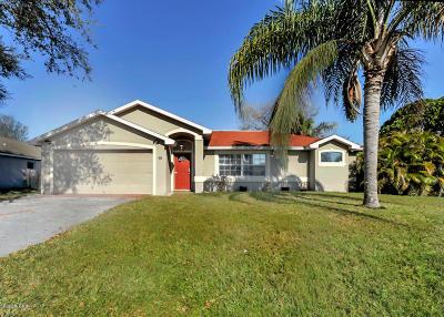 Palm Bay Single Family Home For Sale: 256 Gladiola Road NE