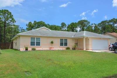 Palm Bay Single Family Home For Sale: 1443 Kaslo Circle NW