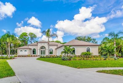 Palm Bay Single Family Home For Sale: 984 Easterwood Court SE