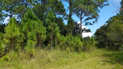 Merritt Island Residential Lots & Land For Sale: Carew Place