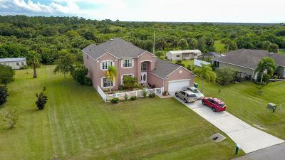 Palm Bay Single Family Home For Sale: 411 Allison Drive