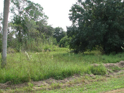 Cocoa Residential Lots & Land For Sale: 5039 Baggett Place