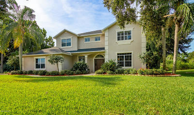 Merritt Island Single Family Home For Sale: 640 Apache Trail
