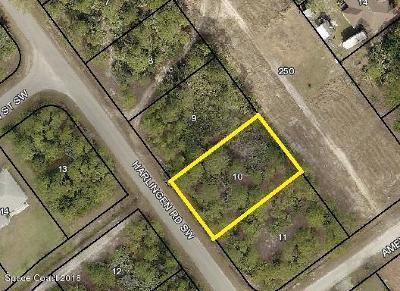 Residential Lots & Land For Sale: 1161 Harlingen Road SW