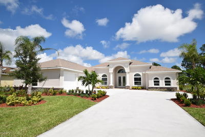 Palm Bay Single Family Home For Sale: 2007 Windbrook Drive SE