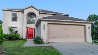Palm Bay Single Family Home For Sale: 899 SW Natroma Avenue SW