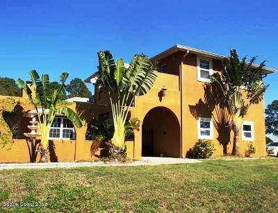 Single Family Home For Sale: 591 Firestone Street NE