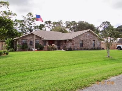 Palm Bay FL Single Family Home For Sale: $282,900