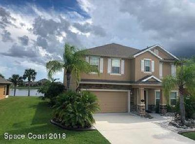 Palm Bay Single Family Home For Sale: 2625 Snapdragon Drive NW
