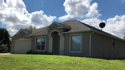 Palm Bay Single Family Home For Sale: 3138 Pomello Avenue SW