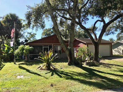 Brevard County Single Family Home For Sale: 1140 Grapefruit Road SE