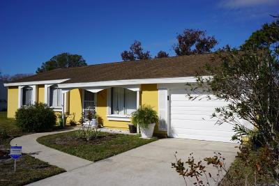 Brevard County Single Family Home For Sale: 966 Mariposa Drive NE