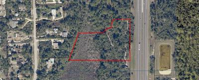 Brevard County Residential Lots & Land For Sale: Spangler Lane