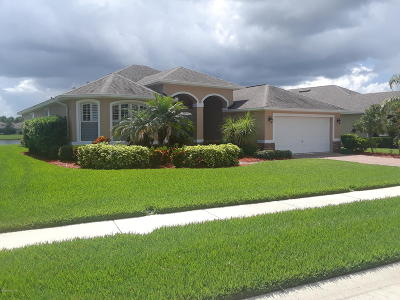 Palm Bay Single Family Home For Sale: 298 Broyles Drive SE