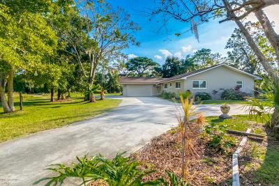 Brevard County Single Family Home For Sale: 3905 Lake Washington Road
