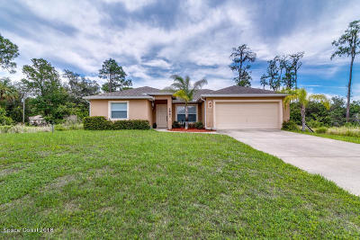 Palm Bay Single Family Home For Sale: 2861 SE Emerson Drive SE