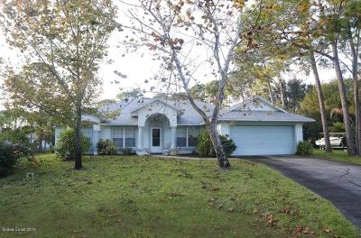 Palm Bay FL Single Family Home For Sale: $248,000