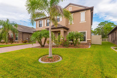 Palm Bay Single Family Home For Sale: 542 Dillard Drive SE