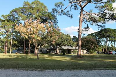 Palm Bay Single Family Home For Sale: 1505 Pinetree Lane NW