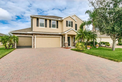 Palm Bay Single Family Home For Sale: 135 Broyles Drive SE
