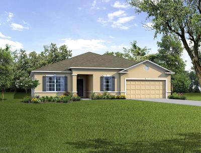 Palm Bay Single Family Home For Sale: 531 Fort Pierce Street SW