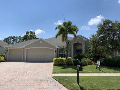 Palm Bay Single Family Home For Sale: 213 Brandy Creek Circle SE