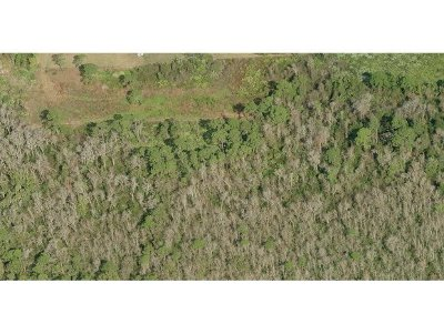 Residential Lots & Land For Sale: 7965 Adrian Way
