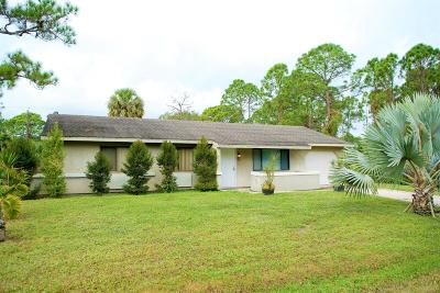 Palm Bay Single Family Home For Sale: 146 Carmelite Avenue NW