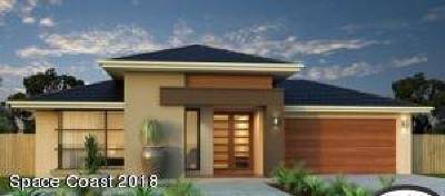 Brevard County Single Family Home For Sale: 1488 Transcoro Street SE
