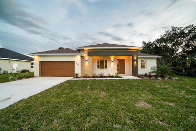 Brevard County Single Family Home For Sale: 3600 SE Jupiter Boulevard