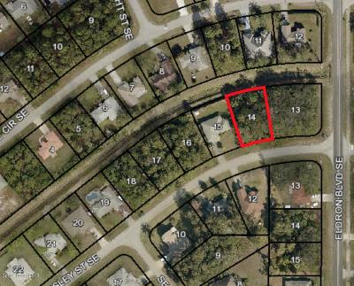 Brevard County Residential Lots & Land For Sale: 481 Ainsley Street SE
