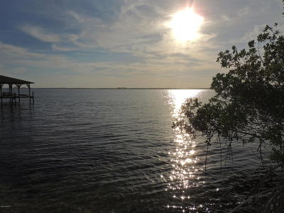 Brevard County Residential Lots & Land For Sale: 10550 S Tropical
