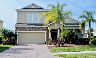 Palm Bay Single Family Home For Sale: 208 SE Abernathy Circle SE