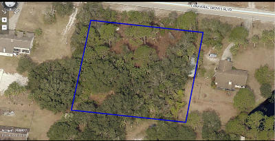 Brevard County Residential Lots & Land For Sale: 3315 Canaveral Groves Boulevard
