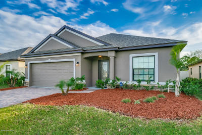 Palm Bay Single Family Home For Sale: 920 Dillard Drive SE