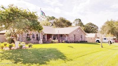 Palm Bay Single Family Home For Sale: 416 Hurst Road NE