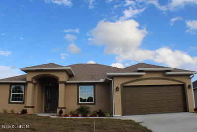 Palm Bay Single Family Home For Sale: 781 Carlyle Avenue SE