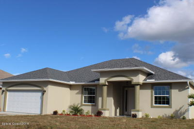 Palm Bay Single Family Home For Sale: 791 Carlyle Avenue SE