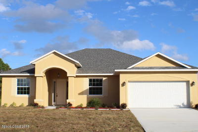 Palm Bay Single Family Home For Sale: 803 Carlyle Avenue SE
