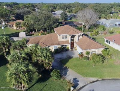 Palm Bay Single Family Home For Sale: 914 Sierra Place NE